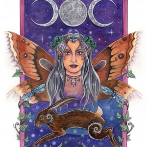 imminate luna fairy greetings card