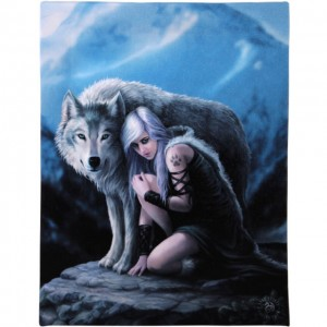 protector-anne-stokes