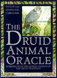 druid animal oracle cards
