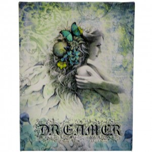 dreamer angel canvas picture