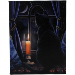 midnight wall canvas lisa parker