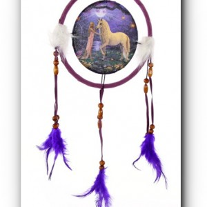 dream catcher unicorn garden