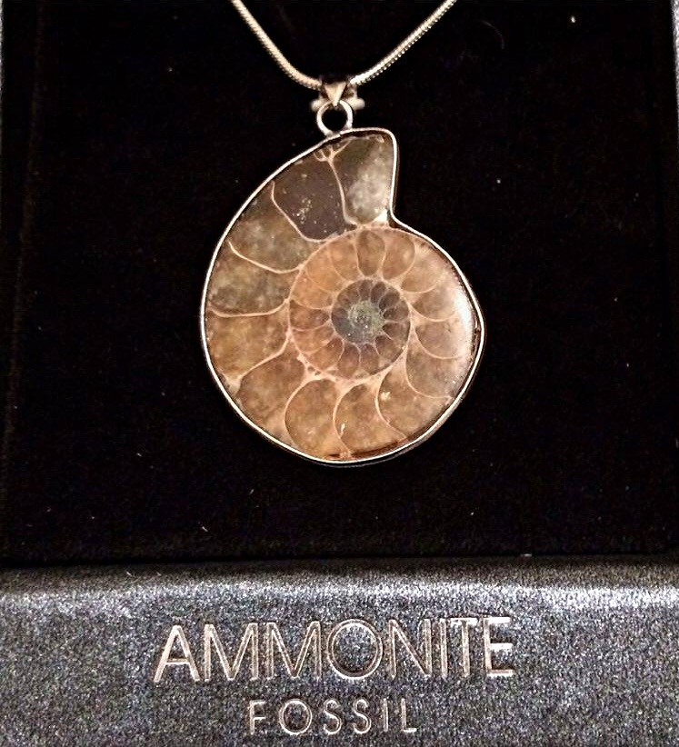 Fossil ammonite pendants wealth happiness mystic wish fossil ammonite pendants wealth happiness aloadofball Image collections