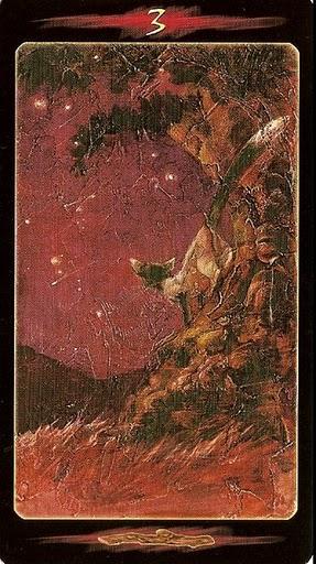 Tarot Of The Secret Forest Mystic Wish