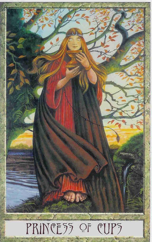 The Druid Craft Tarot Mystic Wish