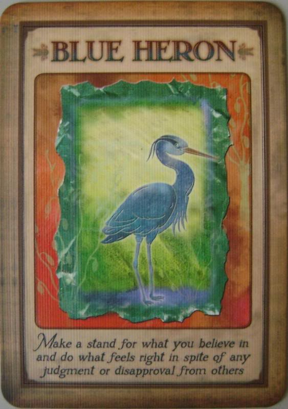 Messages From Your Animal Spirit Guide Steven Farmer