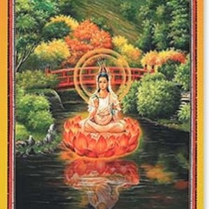 Red bridge quan yin card