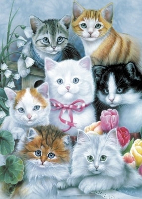 cuddly cats greetings card