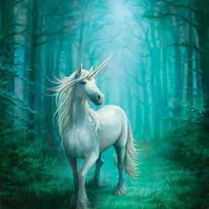 forest unicorn anne stoke fridge magnet