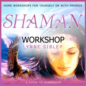shaman workshop cd