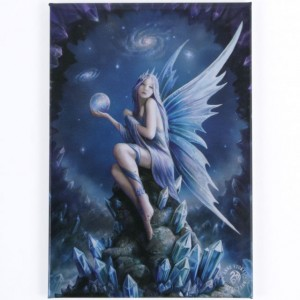 Star gazer Anne Stokes wall canvas