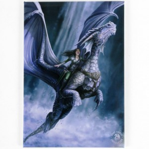 wall canvas anne stokes take to the air
