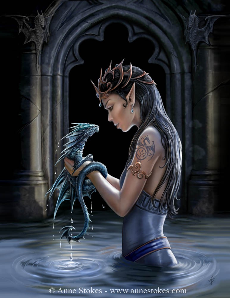the water dragons wall canvas picture anne stokes mystic wish. Black Bedroom Furniture Sets. Home Design Ideas