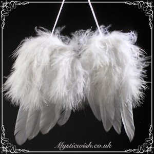 angel wings feathers