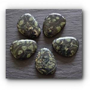 kambala jasper palm stone